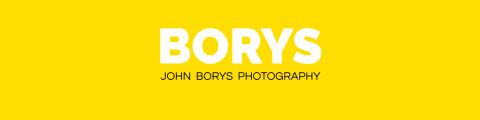 BORYS HEADER website